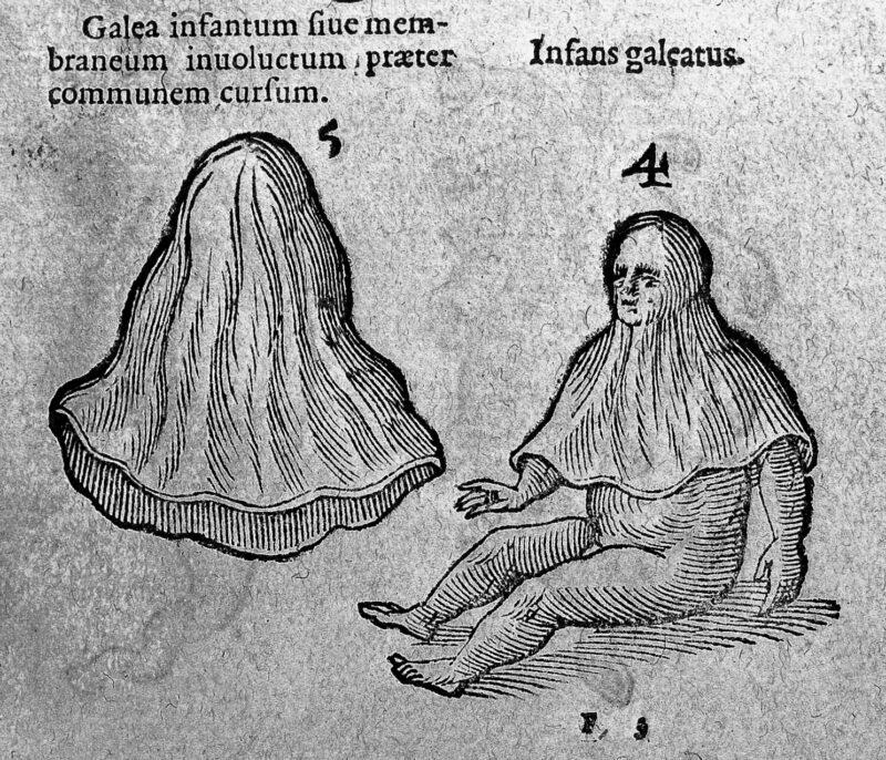 Illustration aus dem 16,Jahrhundert